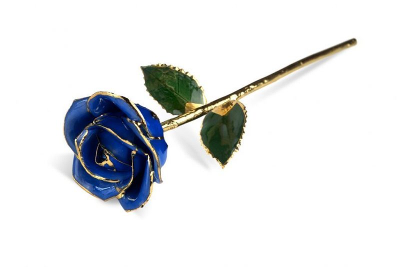 Dark Blue Rose Gifts without Premium Display Case - Infinity Rose USA
