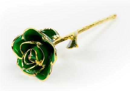 Dark-Green-Rose-Only