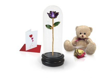 Domes-Gift-Sets-Purple
