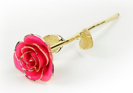 Pink-Rose-Only-With-Gold-Leaf