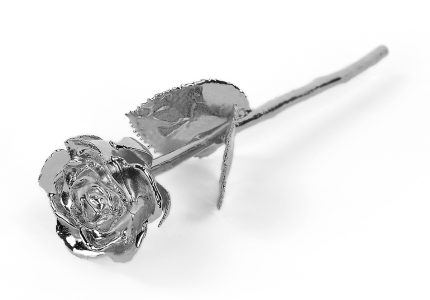 Platinum-Rose-Only
