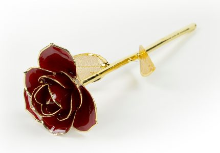 Red-Rose-Only-With-Gold-Leaf