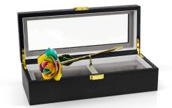 Spectrum-Rose-OAIDC
