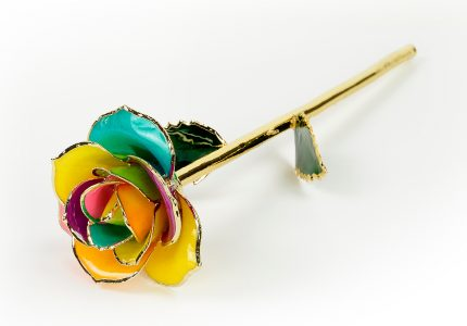 Spectrum-Rose-Only