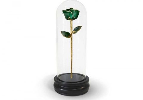 Green Rose Gifts with Premium Glass Dome - Infinity Rose USA