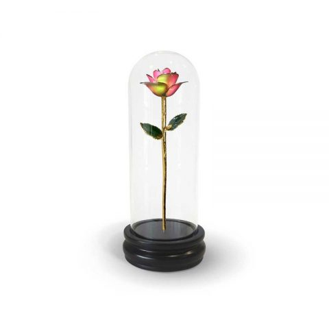 Lunar Rainbow Rose Gifts with Premium Glass Dome - Infinity Rose USA