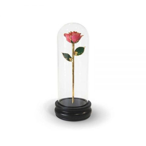 Pink Rose Gifts with Premium Glass Dome - Infinity Rose USA